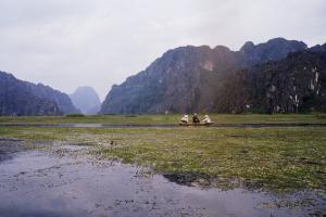 Van Long 6