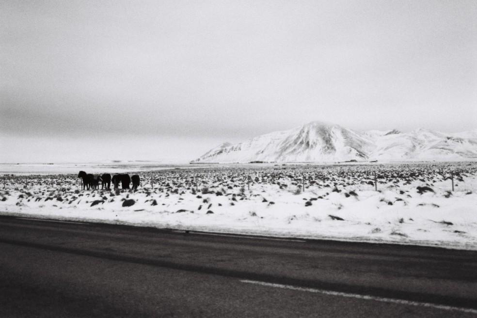 Islande B&W 17